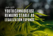 youth cannabis use remains stable as legalizaton expands