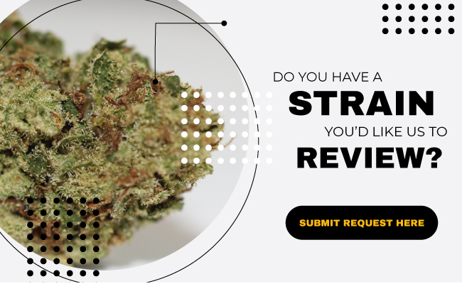 Submit Strain Review