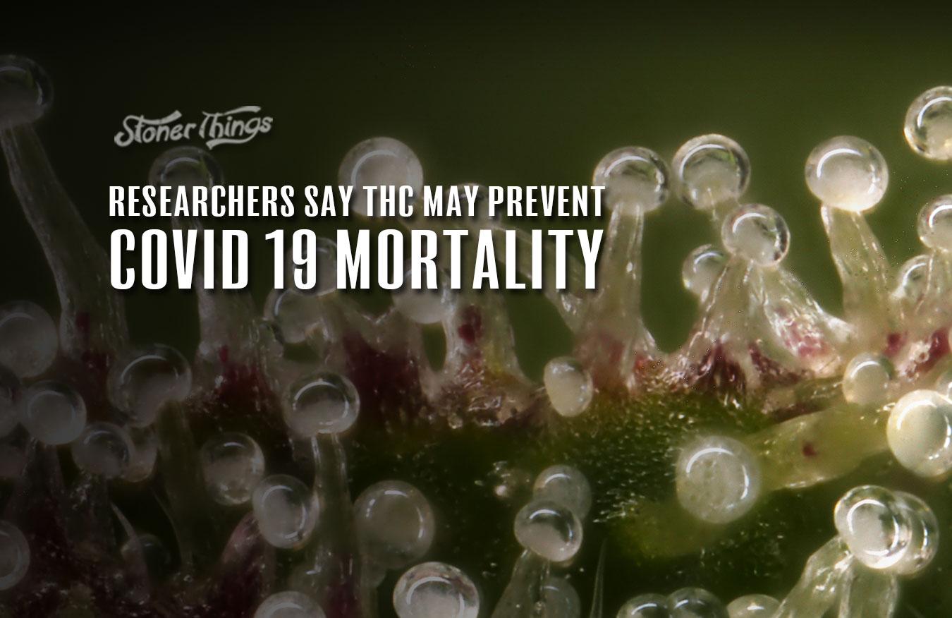 THC prevent covid 19 mortality