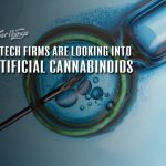 artificial cannabinoids biotech firms