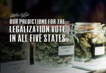 marijuana legalization vote 2020 predictions