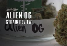 Alien OG Strain Review