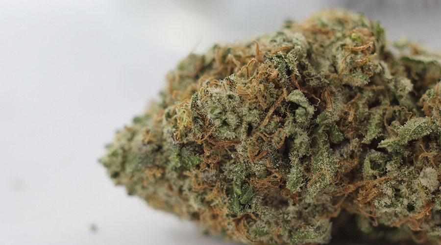 Alien OG Weed Review