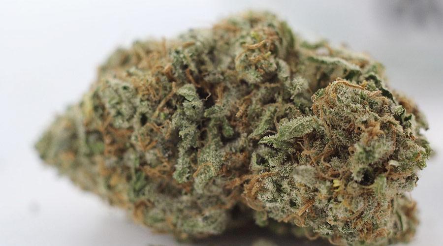 Alien OG cannabis