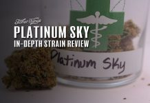 Platinum Sky Strain Review