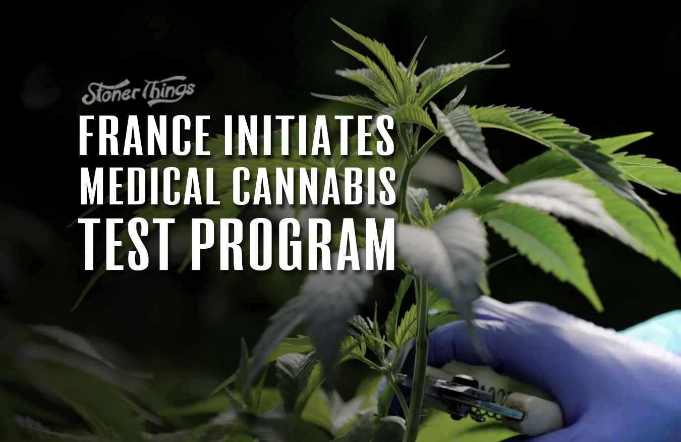 france medical cannabis test program