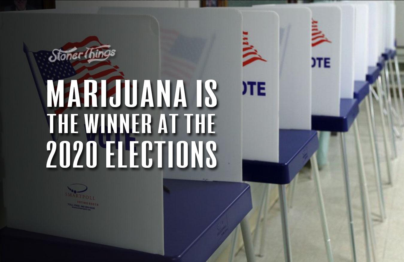 marijuana legalization 2020 elections