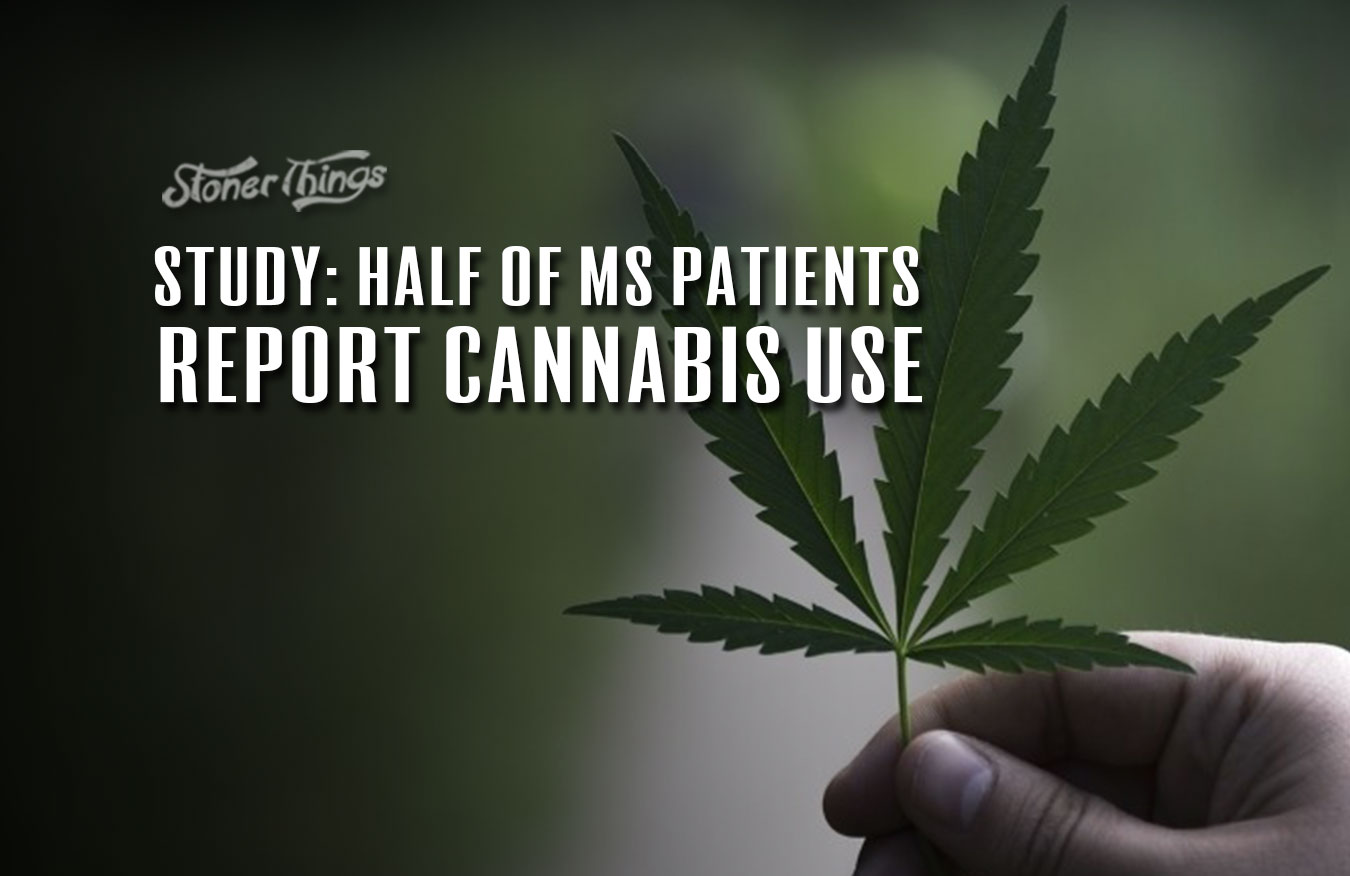 multiple sclerosis patients cannabis use