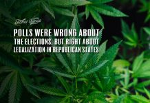 polls right marijuana legalization