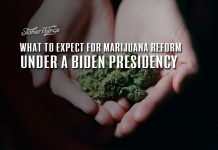 marijuana reform biden presidency