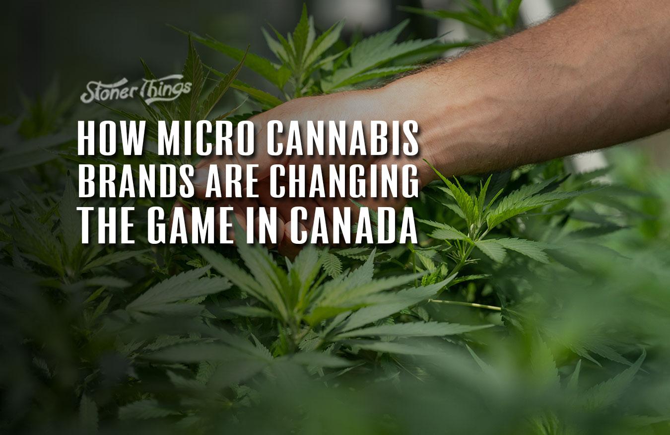 micro cannabis brands canada
