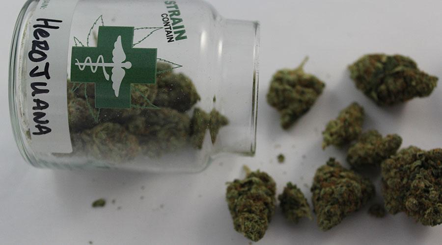 Herojuana cannabis