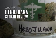 Herojuana strain review