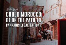 morocco cannabis legalization