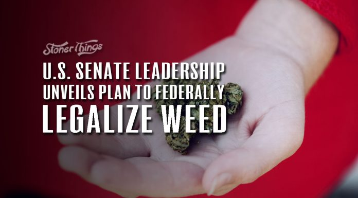 U.S. Senate Leadership Unveils Plan to Federally Legalize Weed