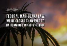 federal marijuana law