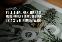 poll legal marijuana popularity