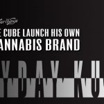 FryDay Kush Ice Cube Cannabis Brand