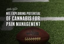 NFL research cannabis pain management