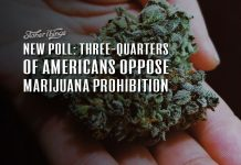 Three Quarters Americans Oppose Marijuana Prohibition