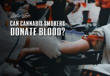 can cannabis smokers donate blood