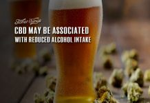 cbd reduces alcohol consumption