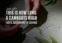 how long does a cannabis high last
