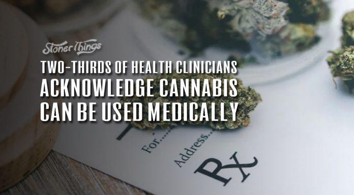 two thirds health clinicians acknowledge marijuana medical use