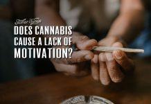 cannabis motivation