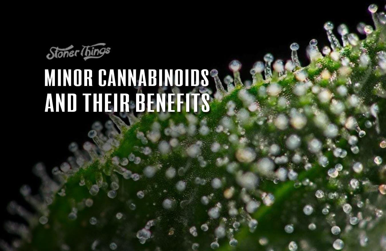 minor cannabinoids rare cannabinoids