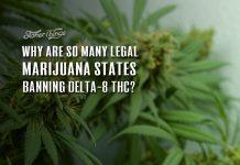 states banning delta 8 thc
