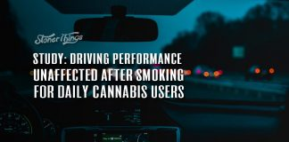 study driving performance unaffected daily cannabis users