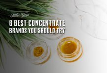 Best Concentrate Brands